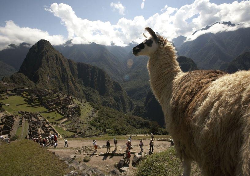 Peru Guidelines