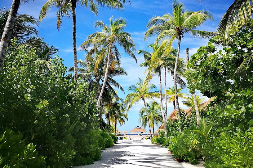 Best Time To Visit Maldive